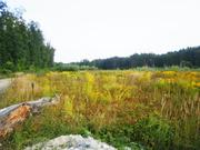 Вкусные земельные участки возле черты Киева