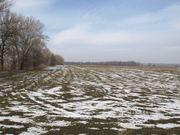 Продажа земельного участка размером 16 га возле Днепра