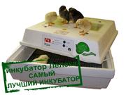 Инкубаторы Лелека для яиц