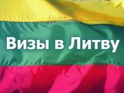 Виза в Литву. Литовская виза. От 95 €. Звони сейчас!